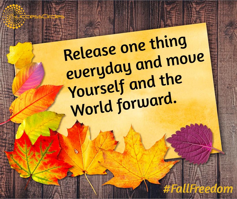 Fall Freedom