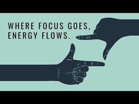 focus-goes